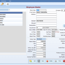 Simplify Your Workload by Using Payroll Software for Small Businesses